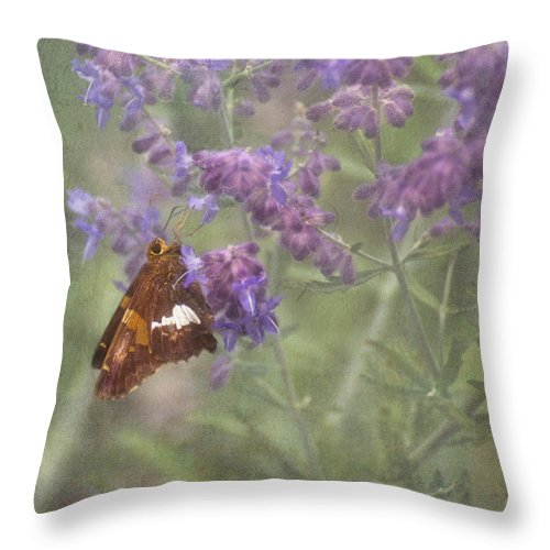 Silver Spotted Skipper Throw Pillow featuring the photograph Silver Spotted Skipper by Mel Hensley