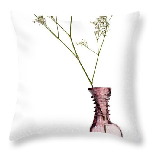 Still-life Throw Pillow featuring the photograph Simplicity by Dave Bowman