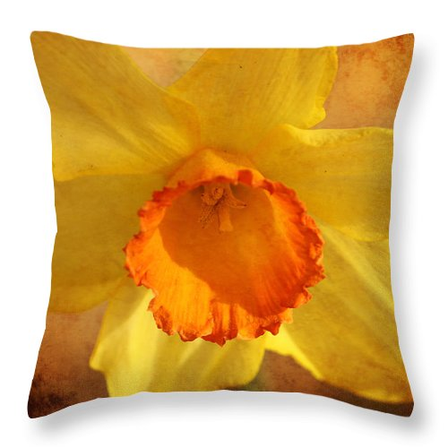Daffodil Throw Pillow featuring the photograph Single Daffodil by Karen Beasley