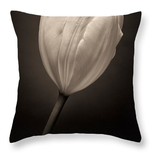 Art Throw Pillow featuring the photograph Single Tulip by Janice Sullivan