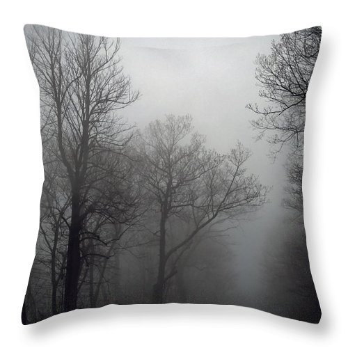 Skyline Drive Fog Throw Pillow featuring the photograph Skyline Drive In Fog by Greg Reed