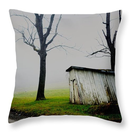 Old Barn Throw Pillow featuring the photograph Slant by Carlee Ojeda