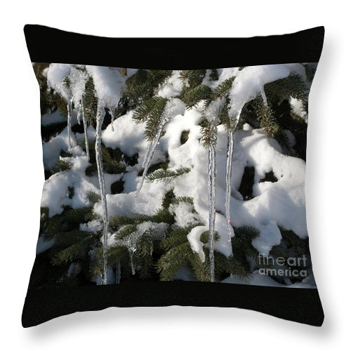 Winter Throw Pillow featuring the photograph Slow Snow Melt by Ann Horn