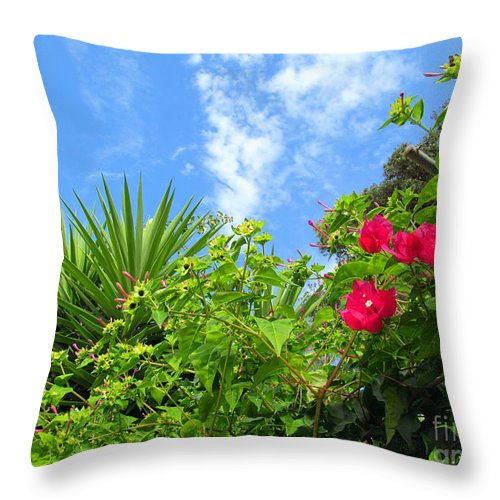 Bougainvillea Throw Pillow featuring the photograph Small Blooms by Tina M Wenger
