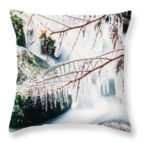 Beautiful Throw Pillow featuring the photograph Small Creek Freezing Up Forming Icicles by Stephan Pietzko