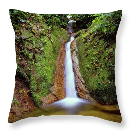 South America Throw Pillow featuring the photograph Small Waterfall In Tropical Rain Forest by Fstoplight