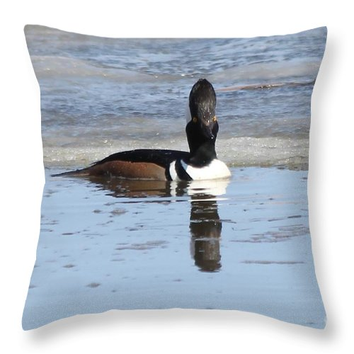 Hodded Throw Pillow featuring the photograph Smile For The Camera by Lori Tordsen