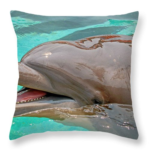 Dolphin Throw Pillow featuring the photograph Smiling At You by Donna Proctor