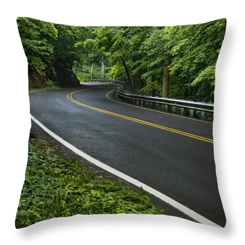 Road Throw Pillow featuring the photograph Smoky Mountain Road After Spring Rain E70 by Wendell Franks