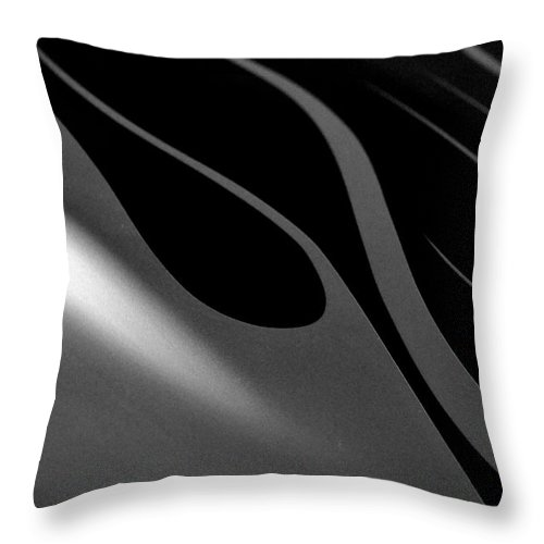 Newel Hunter Throw Pillow featuring the photograph Smooth Lines2 by Newel Hunter
