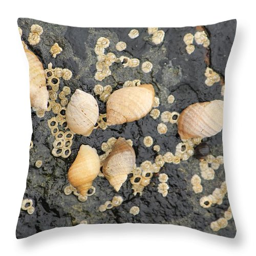 Fineartamerica Throw Pillow featuring the photograph Snail Family Vacation by Michael Saunders