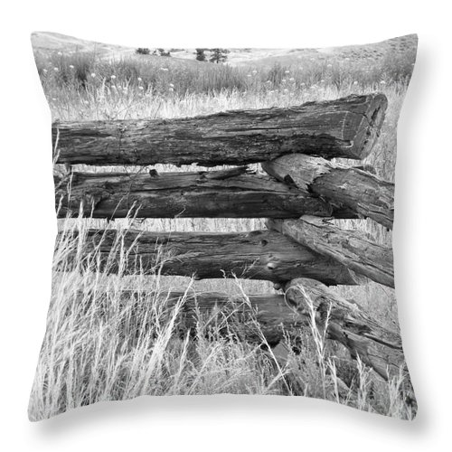 Snake Fence Throw Pillow featuring the photograph Snake Fence by Ann E Robson