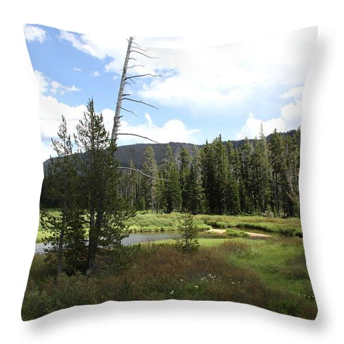 Mountains Throw Pillow featuring the photograph Snake River Meadow by Christiane Schulze Art And Photography