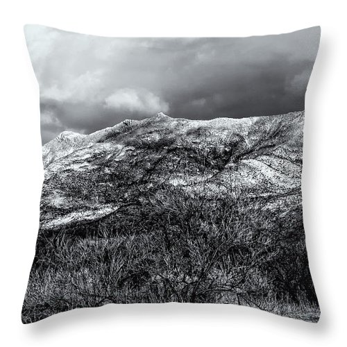 2010 Throw Pillow featuring the photograph Snow Capped 45 by Mark Myhaver
