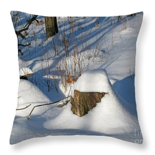 Winter Throw Pillow featuring the photograph Snow-capped by Ann Horn