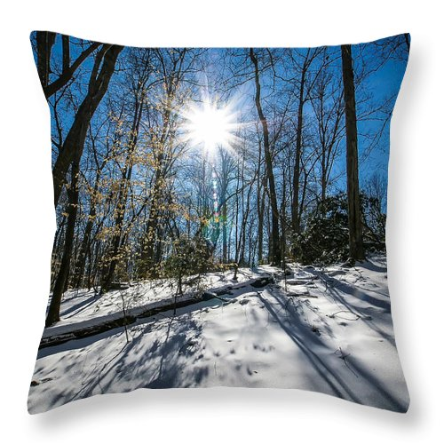 Spa Throw Pillow featuring the photograph Snow Covered Forest by Alex Grichenko