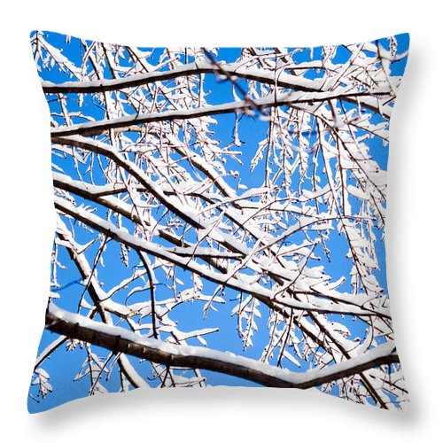 Gaithersburg Throw Pillow featuring the photograph Snow Covered Tree Limb by Thomas Marchessault