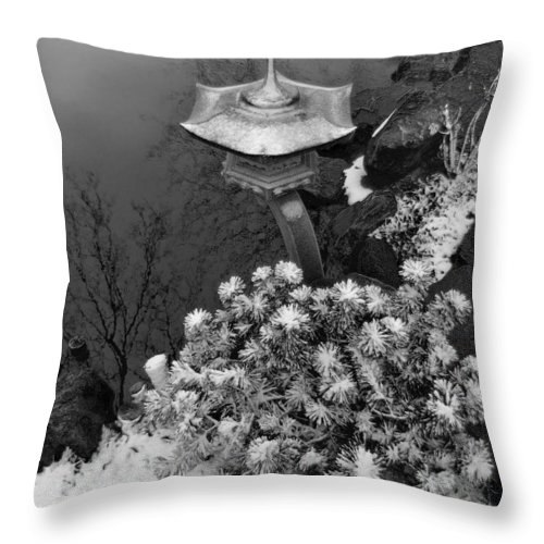 Pond Throw Pillow featuring the photograph Snow Glow by Kevin Eatinger