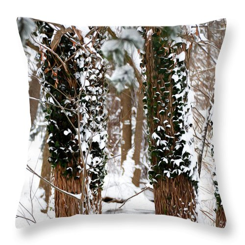 Snow Throw Pillow featuring the photograph Snow On Tress 2 by Tracy Winter