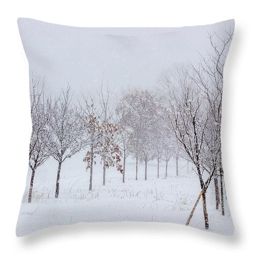Snow Throw Pillow featuring the photograph Snow Storm by Pete Hendley