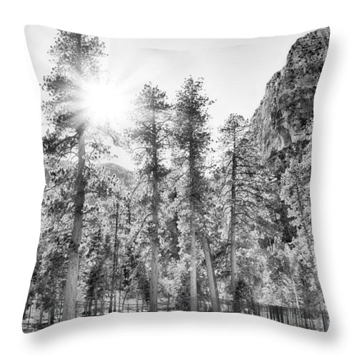 Nature Throw Pillow featuring the photograph Snow Trees by Howard Salmon