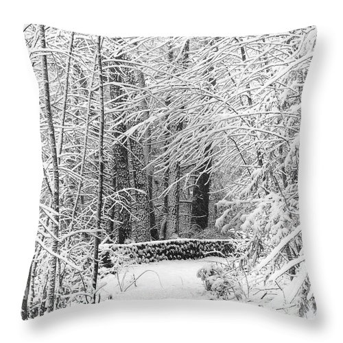Snow Throw Pillow featuring the photograph Snow Wall by Jonathan Steele