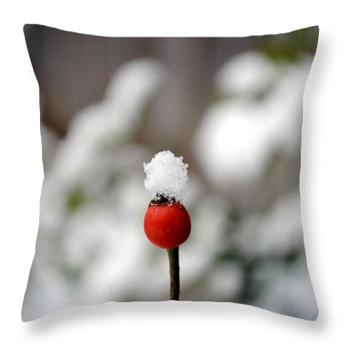 Snow Throw Pillow featuring the photograph Snowcap by Kelly Nowak