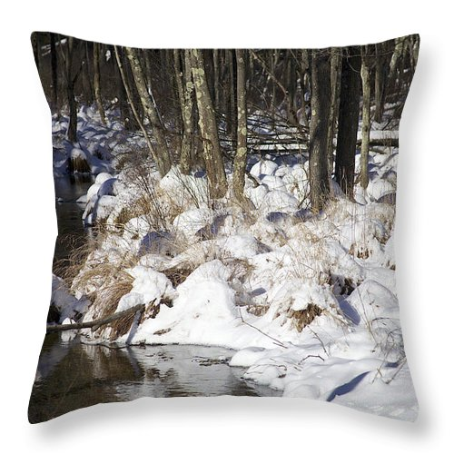 Snow Throw Pillow featuring the photograph Snowy Creek by Cheryl Gayser