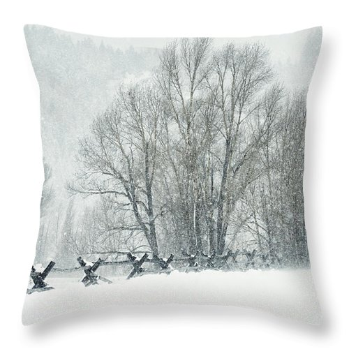 Grand Teton Throw Pillow featuring the photograph Snowy Day In The Tetons by Sandra Bronstein