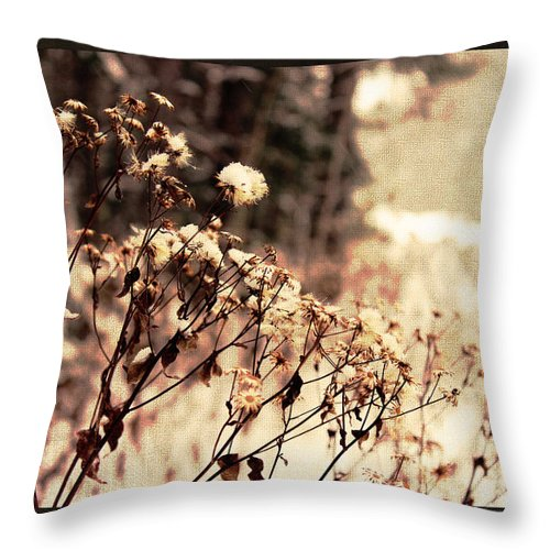 Snow Throw Pillow featuring the photograph Snowy Flowes And Layers by Kelly McAleer