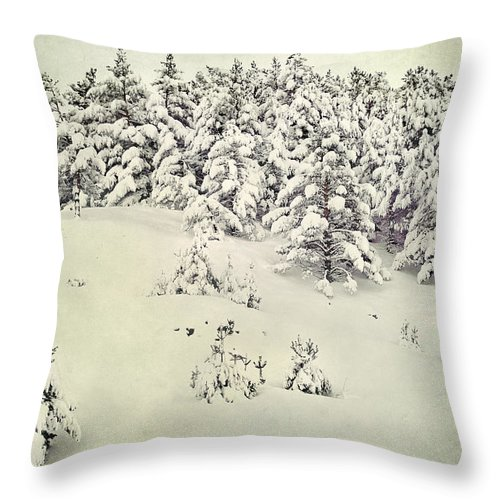 Landscapes Throw Pillow featuring the photograph Snowy Forest Vintage by Guido Montanes Castillo