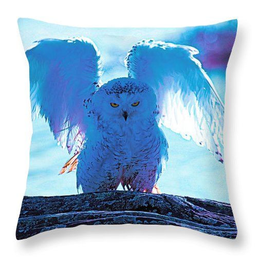 Snowy Owl Throw Pillow featuring the photograph Snowy Owl Drying After Bath by Ed Nicholles