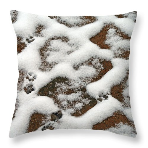 Snow Throw Pillow featuring the photograph Snowy Path And Paw Prints by Karen Adams