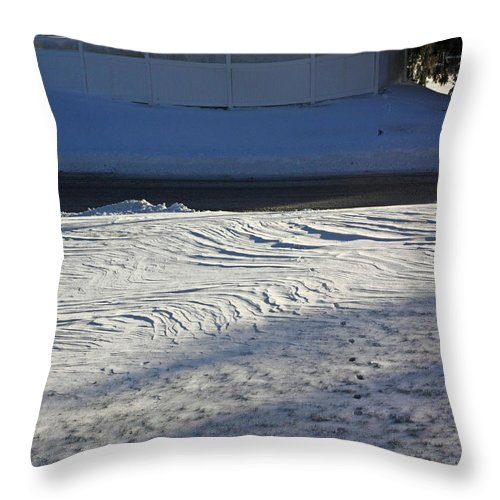 Throw Pillow featuring the photograph Snowy Waves In January by James Connor