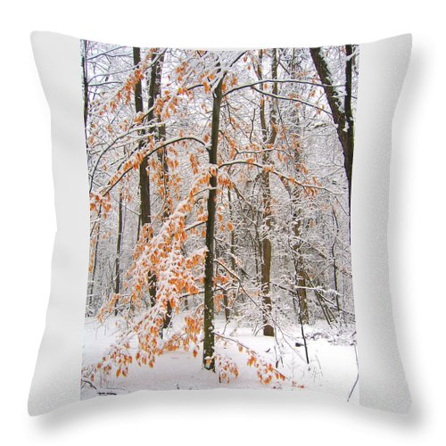 Winter Throw Pillow featuring the photograph Snowy Woods by Ann Horn