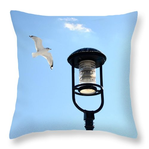 Bird Throw Pillow featuring the photograph Soaring by Corinne Rhode