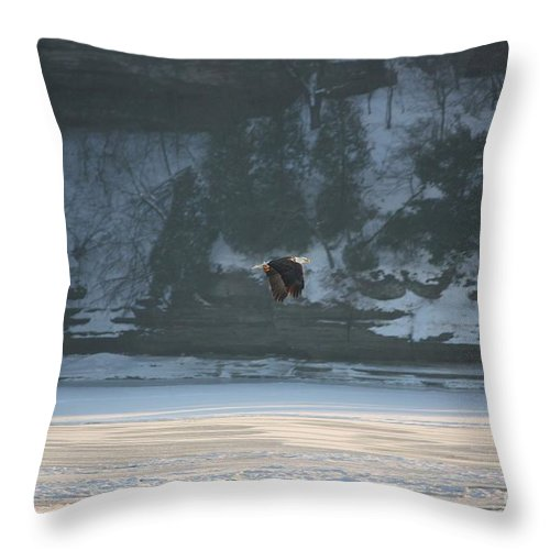 Eagle Throw Pillow featuring the photograph Soaring by Veronica Batterson