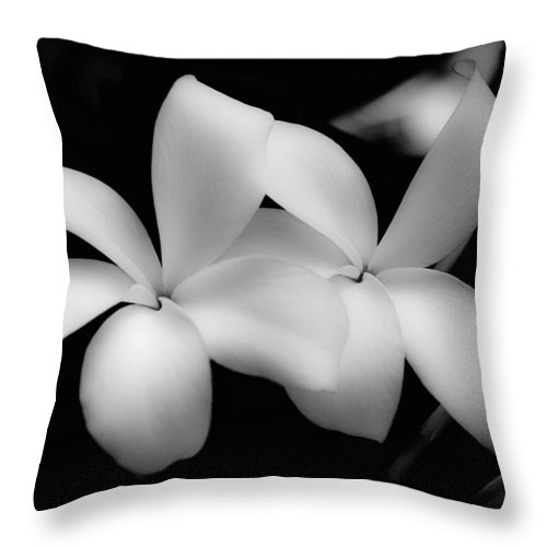 Floral Throw Pillow featuring the photograph Soft Floral Beauty by Ron White