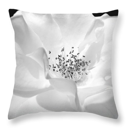 Rose Throw Pillow featuring the photograph Soft Petal Rose In Black And White by Jennie Marie Schell