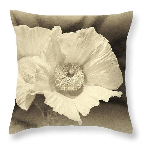 Soft Sepia White Poppy Matilija Petals Throw Pillow featuring the photograph Soft Sepia White Poppy Matilija Flower by Jerry Cowart