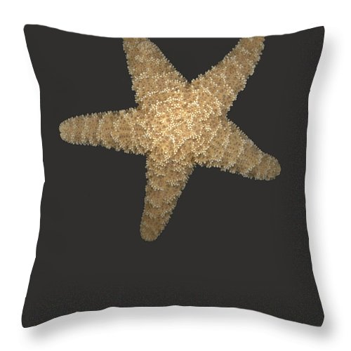 Starfish Throw Pillow featuring the photograph Solo Starfish I by Suzanne Gaff