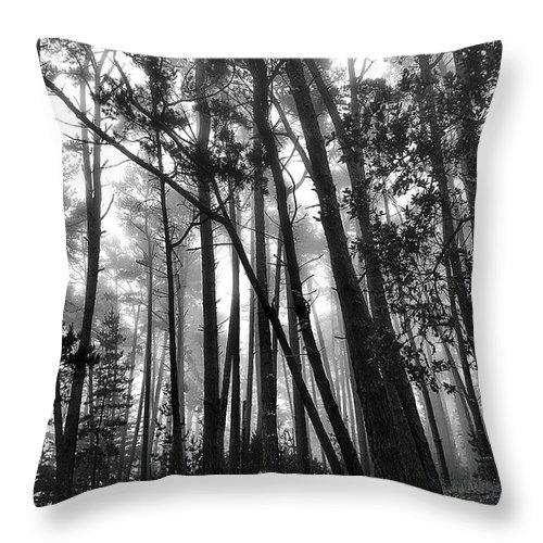 Landscape Throw Pillow featuring the photograph Somber Morning by Maria Coulson