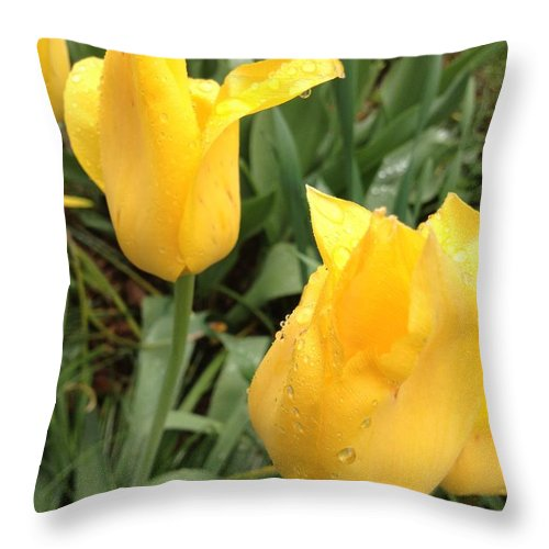 Spring Throw Pillow featuring the photograph Some Here by Joseph Yarbrough
