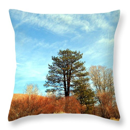 Trees Throw Pillow featuring the photograph Something Simple by Marilyn Diaz
