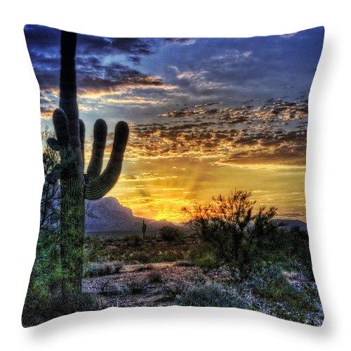 Sonoran Desert Throw Pillow featuring the photograph Sonoran Sunrise by Saija Lehtonen