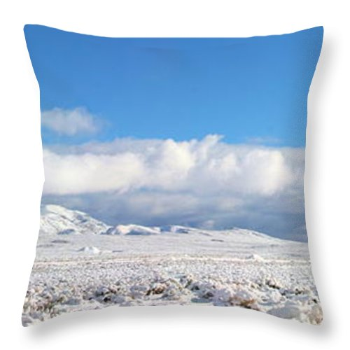 Sky Throw Pillow featuring the photograph Soon Desert Water by Marilyn Diaz