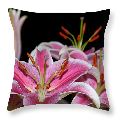Lily Throw Pillow featuring the photograph Sorbonne Lily Macro by Terri Winkler
