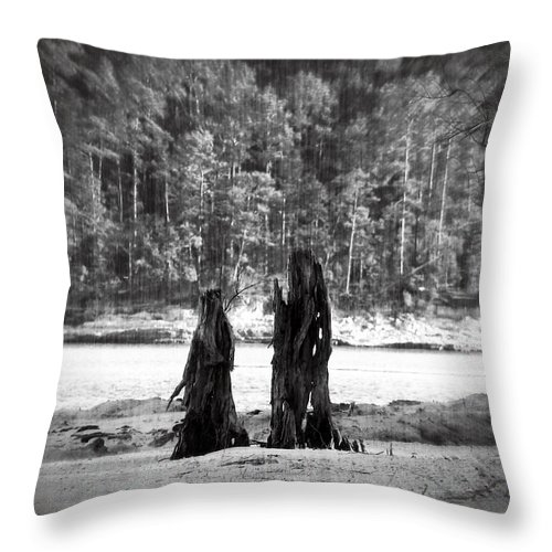 Stump Throw Pillow featuring the photograph Soul Mates by Max Mullins