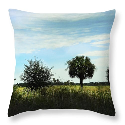 Field Throw Pillow featuring the photograph Southern Serenity by Judy Hall-Folde