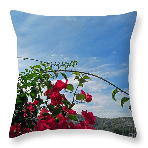 Flowers Throw Pillow featuring the photograph Spanish Bougainvillea by Tina M Wenger